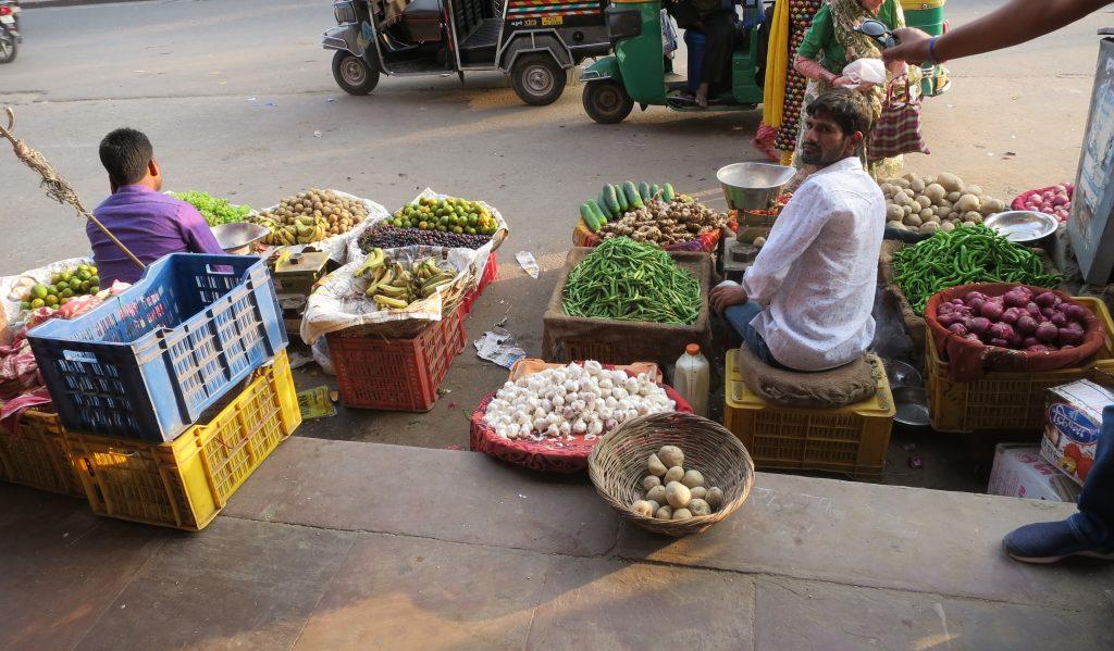 Gata i India.