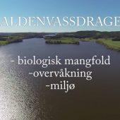Biologisk mangfold i Haldenvassdraget